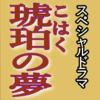 TV東京スペシャルドラマ「琥珀の夢」